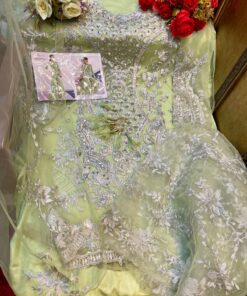 Pakistani Suits Butterfly Net Heavy Embroidered with Moti Work 04